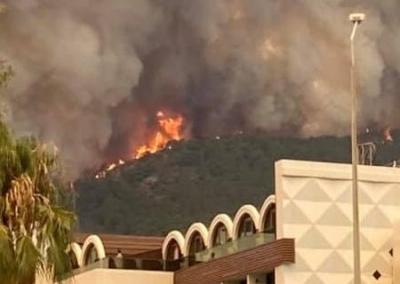 Лесные пожары в Турции добрались до отелей
